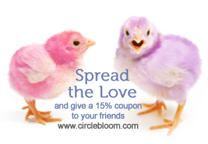 Share the Love – Referral Program