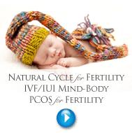 Fertility Programs
