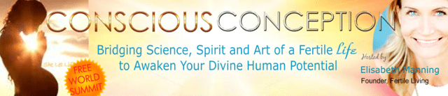 Free Conscious Conception Telesummit