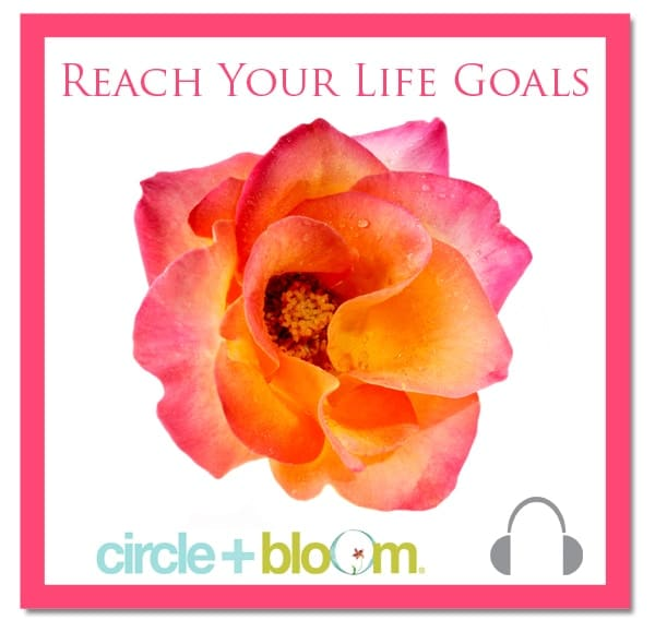 Circle+Bloom Reach Your Life Goals Visualization
