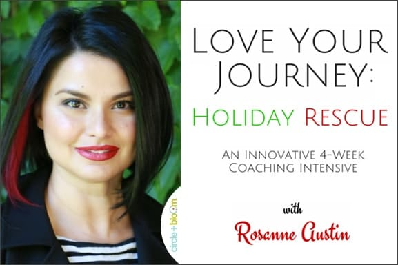 Rosanne Austin Love Your Journey Holiday Rescue