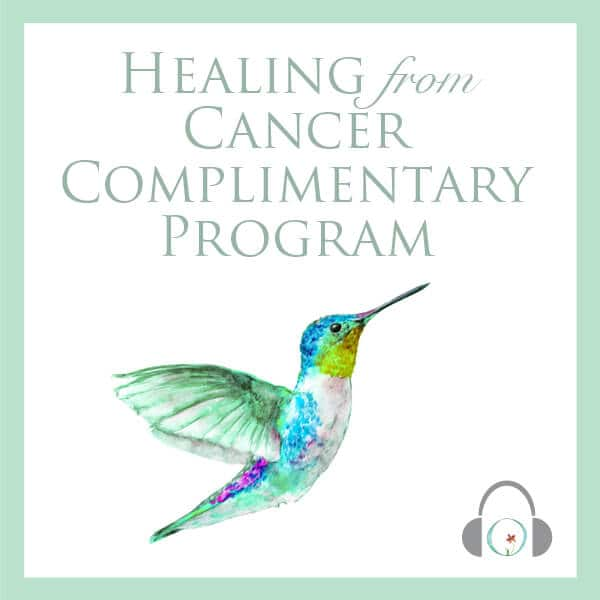 Free Cancer Visualization Program
