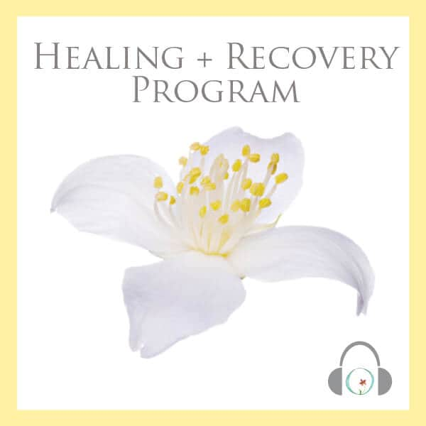 Free Fertility Healing + Recovery Program