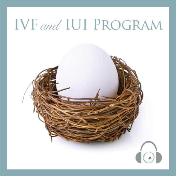 IVF/IUI Mind-Body Program