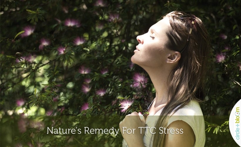 Nature's Remedy For TTC Stress