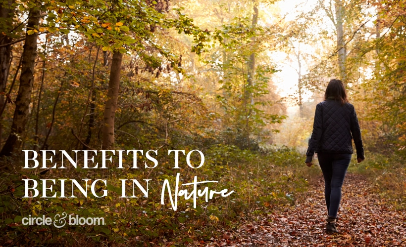 Benefits to Being in Nature
