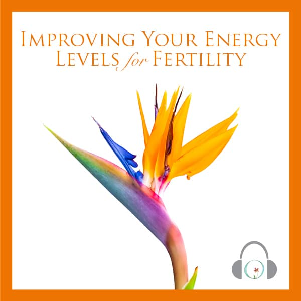 Improving Your Energy Levels For Fertility