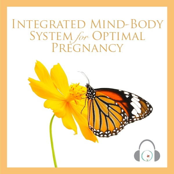 Integrated Mind-Body System For Optimal Pregnancy