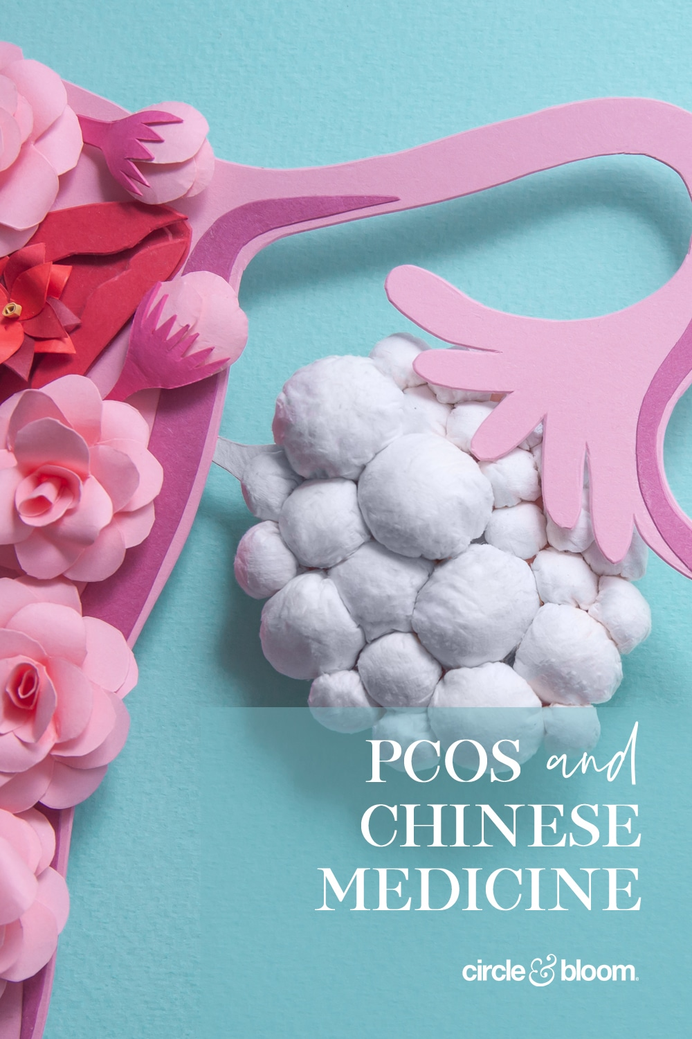 The Use of Chinese Medicine to Treat PCOS