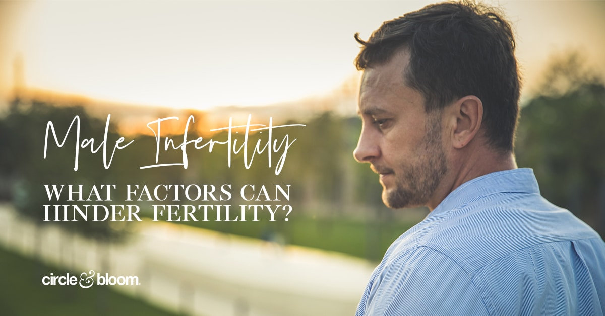 Male Infertility – What Factors Can Hinder Fertility?