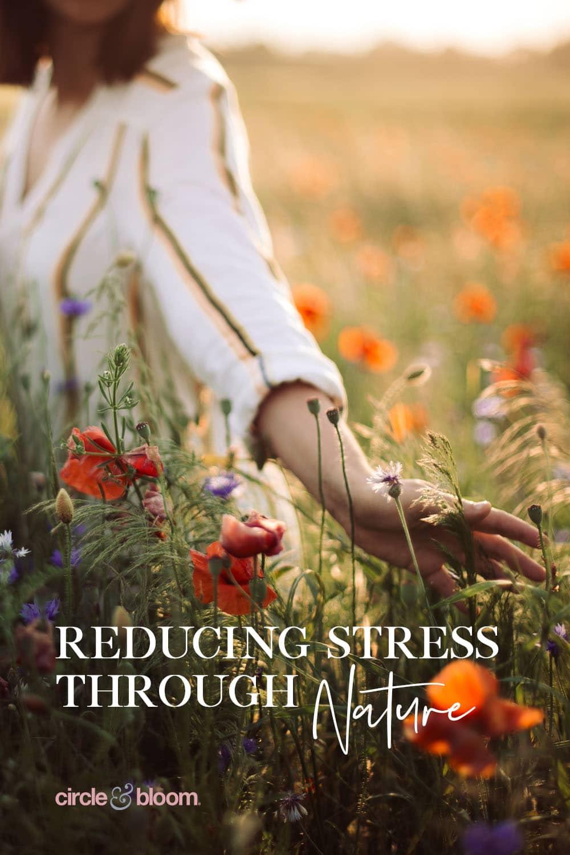 Reducing Stress through Nature