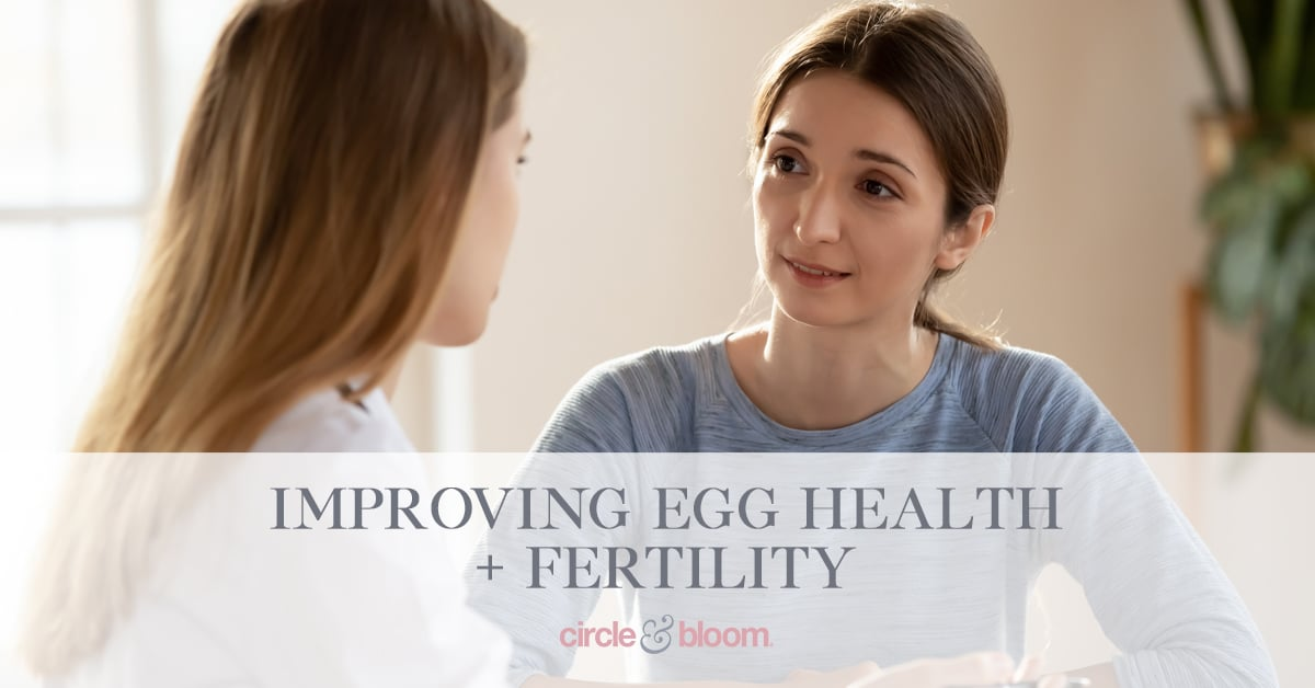 3 Ways To Improve Your Egg Health and Fertility